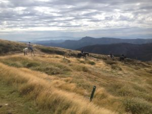 Four people on horseback riding through long dry grass on top of a mountain, with mountains in the background