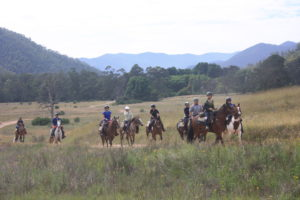 Nine peopleo n horseback riding through a grassed valley with mountains in background