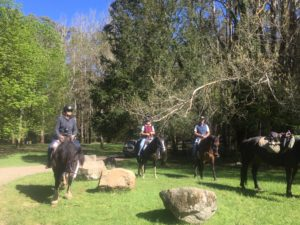 Three people on horseback in a park with large rocks on ground and trees in background