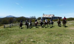Group of riders on horseback in front of craigs hut