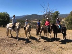 Short 2 hour and half Day Rides in Merrijig Area